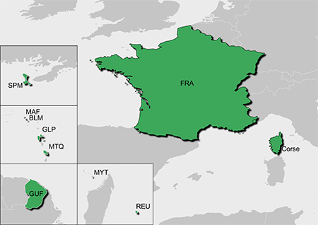 010-12746-00-GARMIN-France-v5-PRO-gesamtes-Land-microSDSD-Karte-02mohBM60hI3xoV