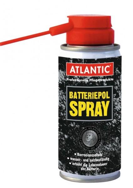 ATLANTIC Batterie Polspray- Elektro-Schutzspray E-Bike- 100ml