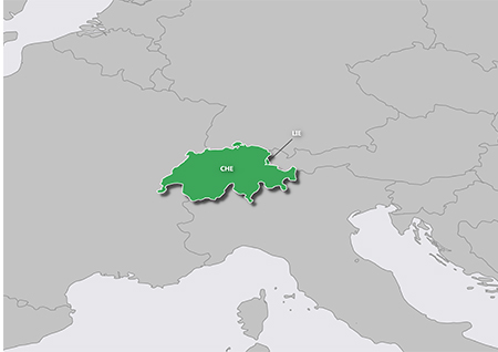 GARMIN Topo Switzerland PRO - microSD/SD - Karte